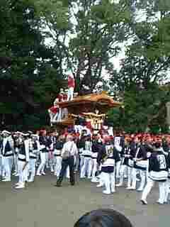 だんじり祭の宮入