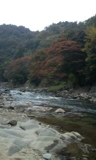 富士急に行ってきました